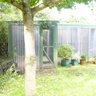 Aviaries and accessories